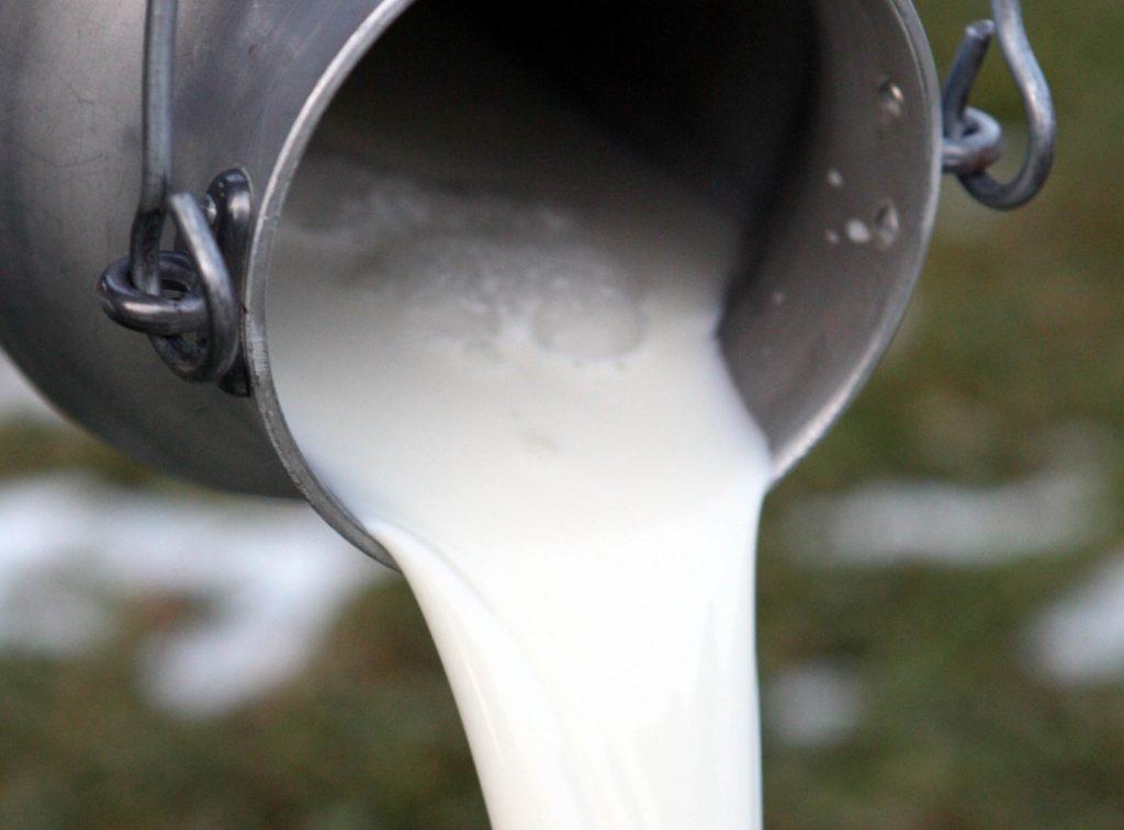 Quarto incontro per la costituzione del BioDIstretto del Sud Sardegna, dedicato alla filiera del latte ovicaprino e dei formaggi