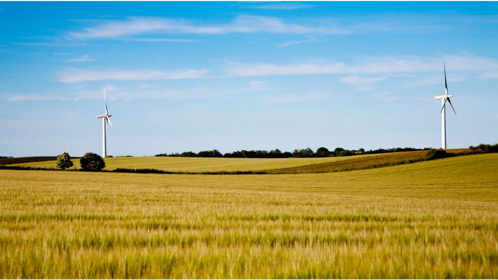 Transizione Ecologica ed Agroalimentare