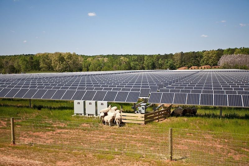 Copagri Sardegna: no agli espropri di terreni agricoli per impianti privati e speculativi di energie rinnovabili